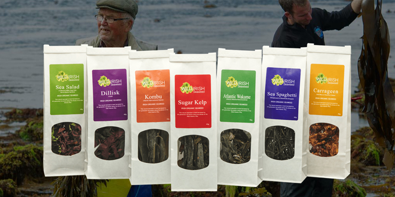 Wild Irish Seaweeds - hand harvested from off the west coast of Co. Clare.